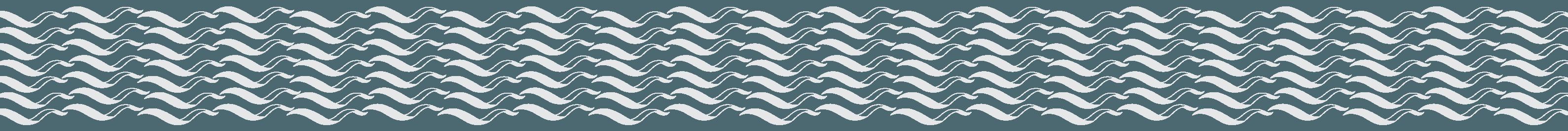 wsc_eeels